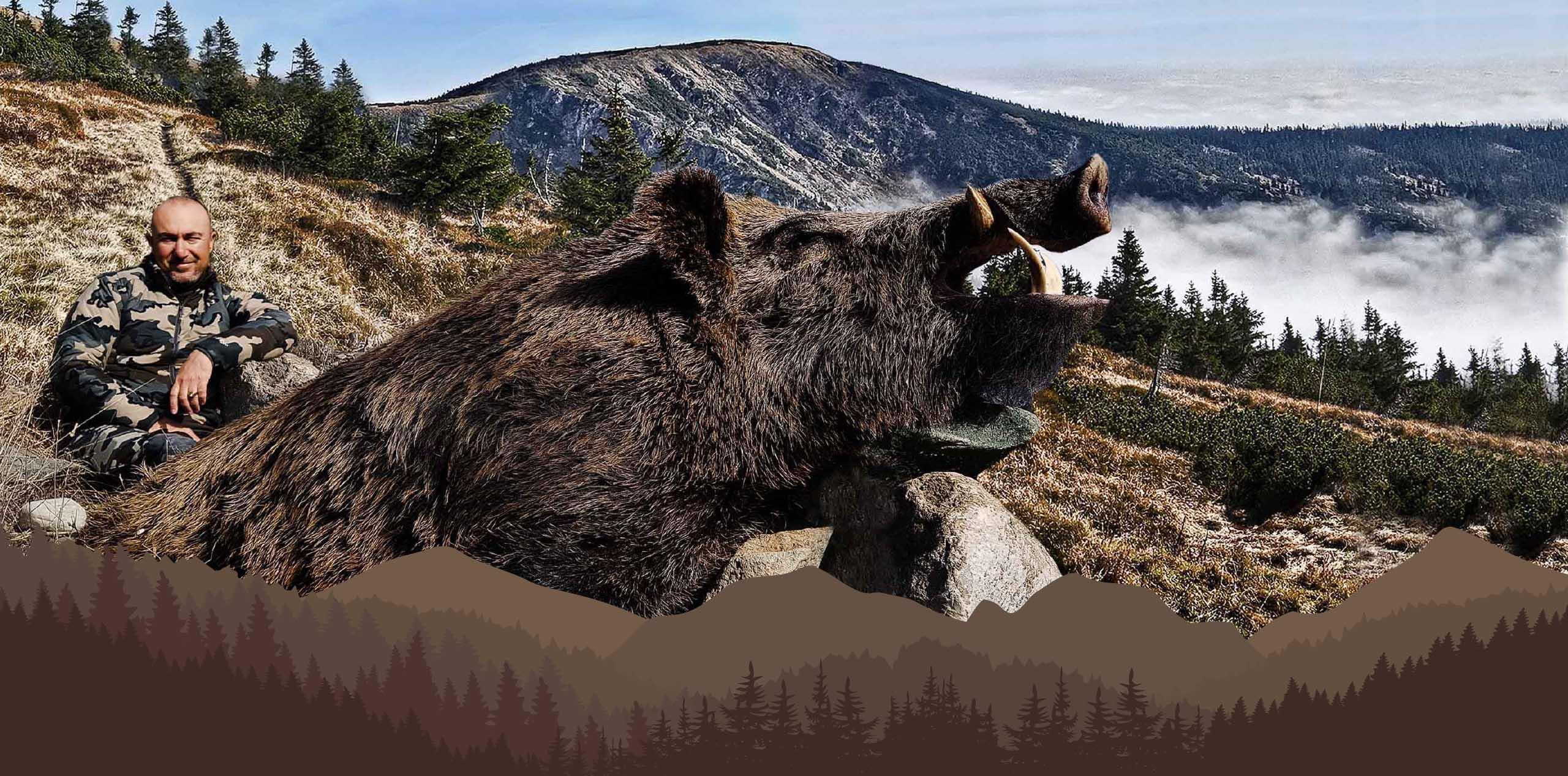 keiler jagd türkei, trofe hunting safaris, caza de jabali turquia, trofe hunting safaris, chasse au sanglier en turquie, trofe hunting safaris