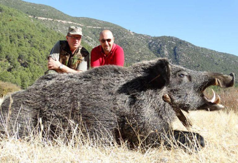 wild-boar-hunt-in-central-anatolia
